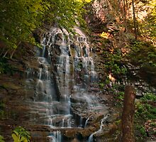 Angel Falls by Penny Rinker
