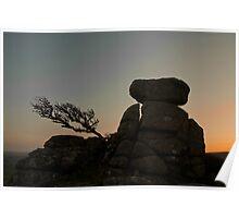 Dartmoor Tor and Tree Poster