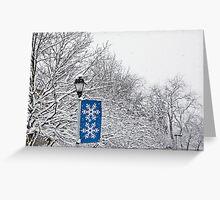 snow zone Greeting Card