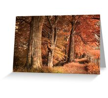 Ousbrough Woods(Textured) Greeting Card