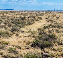 Old Route 66 runs through the Painted Desert, AZ by swtrekker