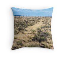 Old Route 66 runs through the Painted Desert, AZ Throw Pillow
