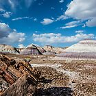 Blue Mesa, Petrified Forest National Park, on Route 66, AZ by swtrekker