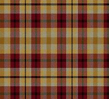 02535 City and County of Baltimore, Maryland E-fficial Fashion Tartan Fabric Print Iphone Case by Detnecs2013