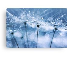 Blowball Bokeh Boogie.... Canvas Print