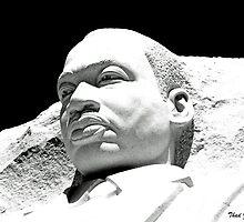 Martin Luther King, Jr. Memorial by Thad Zajdowicz
