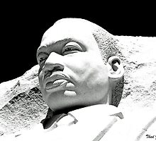 Martin Luther King, Jr. Memorial by Thad Zajdowicz