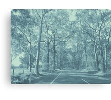 Appin Road - Mint & Blue Canvas Print