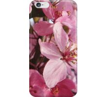 Summer Blossom iPhone Case/Skin