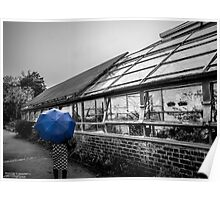 blue brolly Poster