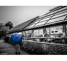blue brolly Photographic Print