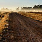 Early Morning Wandering - Dunedoo NSW Australia by Bev Woodman