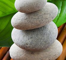 Zen stones and leaves by kvvpst