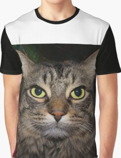 Cute Christmas Cat Graphic T-Shirt