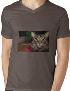Cute Christmas Cat Mens V-Neck T-Shirt