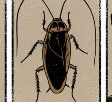 Foot, Cockroach, Nuclear Bomb Sticker