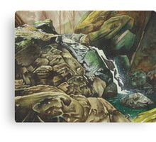 Independence Trail stream, North California - watercolour Canvas Print