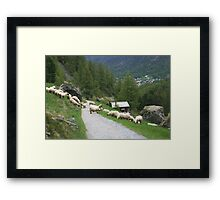 Swiss Countryside Framed Print
