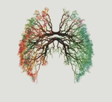 Lungs with roots of colors. by HarsnHarp