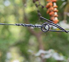 Barb Wire... by ShootingSardar