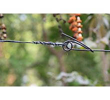 Barb Wire... Photographic Print