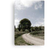 winding dry dirt road on Irish farm Canvas Print