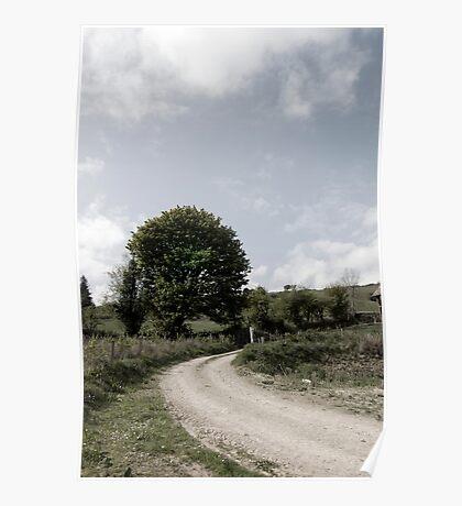 winding dry dirt road on Irish farm Poster