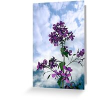 may flowers growing in the wild Greeting Card