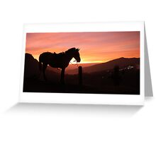 Horse on the mountain Greeting Card