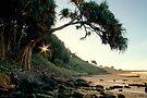 Rainbow Beach by Linda Lees