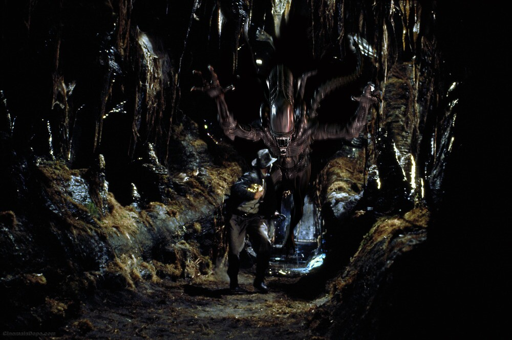 Alien Vs. Indiana Jones  by kc135