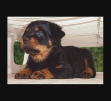 Cute Faced Rottweiler Puppy Side View Kids Tee