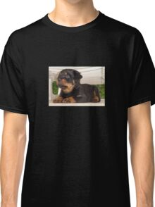 Cute Faced Rottweiler Puppy Side View Classic T-Shirt