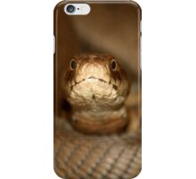 Snake... iPhone Case/Skin