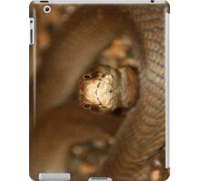 Snake.... iPad Case/Skin