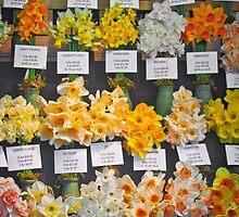 A Host Of Golden Daffodills by pommieken