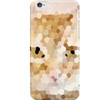 Kitty Kitty iPhone Case/Skin