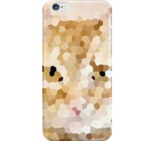 Kitty Kitty iPhone Case/Skin