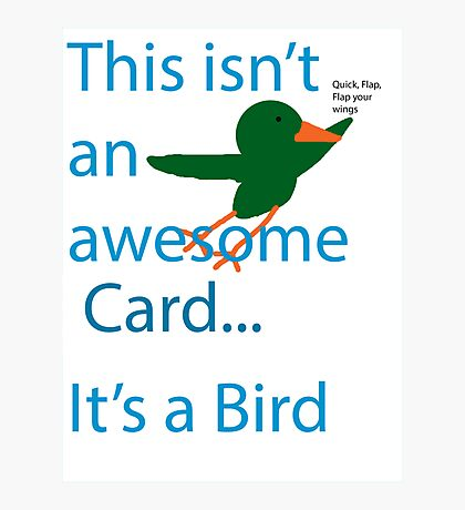 Not a Bird Photographic Print