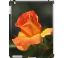 Before She Fades for Winter iPad Case/Skin