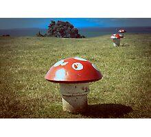 Mushroom vents Photographic Print