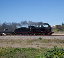"Steam Loco 3237 ""Singleton Flyer"", Singleton NSW Australia by SNPenfold"