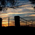 Sunset Milvale Road ... 29 May 2013 by Rosalie Dale