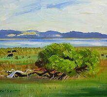 Lake St Clair S.A.  by Virginia McGowan