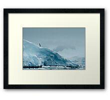 Lone Penguin on Ice Framed Print