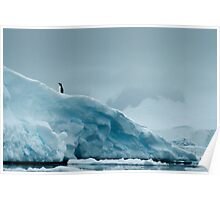 Lone Penguin on Ice Poster