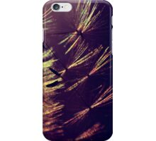 follow the light and you will find your rainbow iPhone Case/Skin