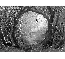 Into The Unknown Photographic Print