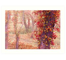 Forest Of Colour Art Print