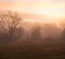 Golden Mist - Hill End NSW - The HDR Experience by Philip Johnson